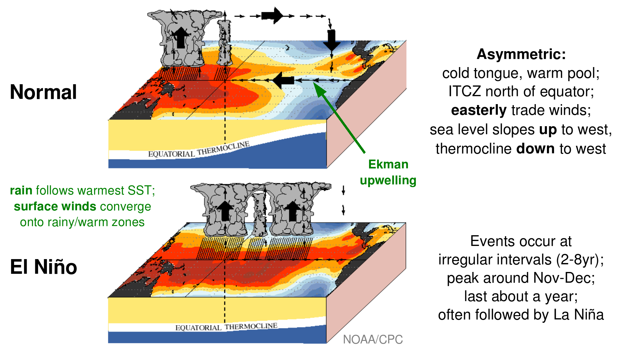 an introduction to el nino or el nino southern oscillation or enso El niño southern oscillation (enso) is a fluctuation of the ocean-atmosphere system that originates in the tropical pacific the warm phase is known as el niño and the cold phase la niña enso is one of the most important sources of annual global climate variability, second only to the earth.